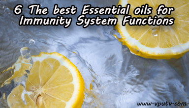 essential oils for immunity